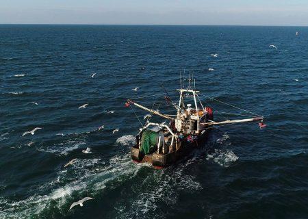 کانادا با هدف بازرسی بیشتر به پیمان توقف داد و ستد غیر قانونی صید ماهی ملحق می شود