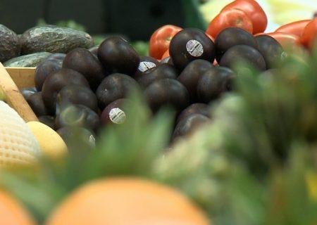 افزایش قیمت مواد غذایی بر اثر تغییرات اقلیمی