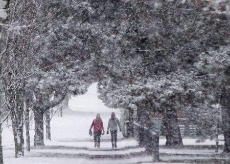 کریسمس امسال در کانادا، سفید یا سبز؟
