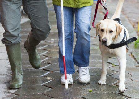 فاصله گیری اجتماعی، چالشی برای نابینایان و کم بینایان