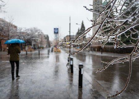 بارش برف در کبک