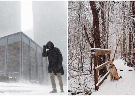 بارش سنگین برف در تورنتو