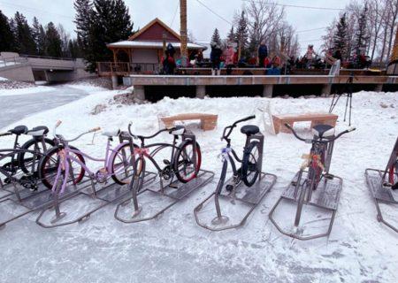 دوچرخه از نوع یخی