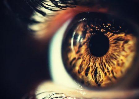 دانشمندان در بازگرداندن شکل اولیه بینایی موفق بودهاند
