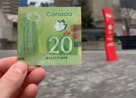 پولهای مخفی تورنتو را پیدا کنید