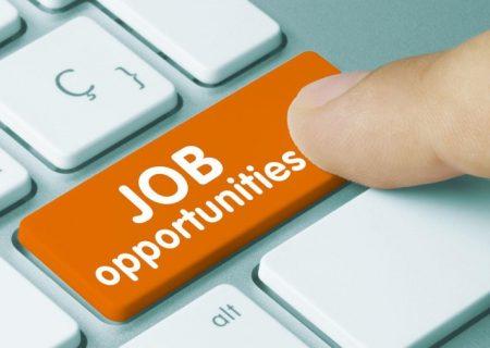 هفت فرصت شغلی در انتاریو