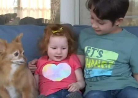 پسر ۸ ساله خواهرش را نجات داد