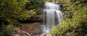 Brues Trail Great Falls Loop