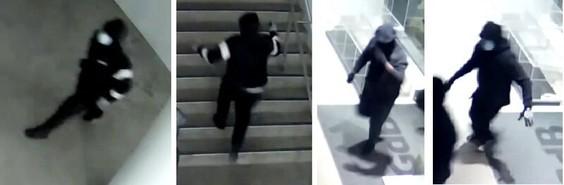 سرقت شبانه از یک گالری در تورنتو
