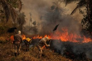 لالو دآمیدا- پانتانال در آتش