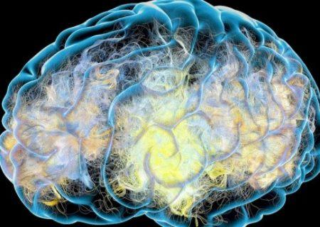 نتایج امیدوار کننده برای کشف داروی آلزایمر