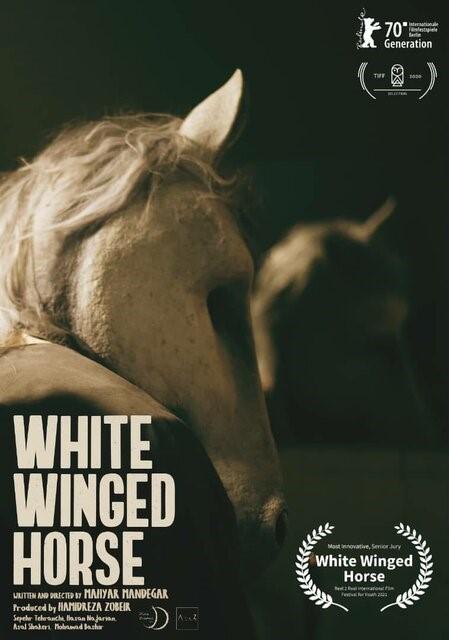 اسب سفید بالدار برنده خلاقانهترین فیلم جشنواره کانادایی