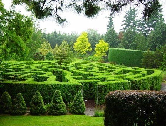 پیادهرویهای بهاری در باغهای رویایی ونکوور