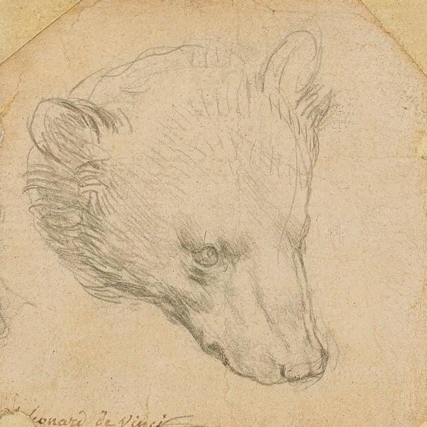 ۱۲ میلیون پوند برای خرس داوینچی