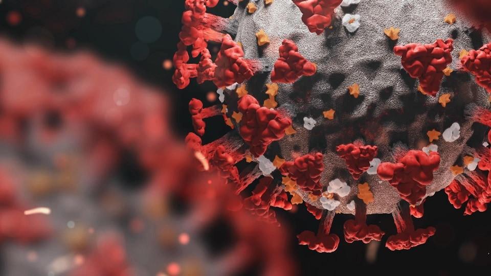 شناسایی گونه جدید ویروس کرونا در ویتنام