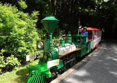 بازگشت دوباره قطار تاریخی پارک استنلی