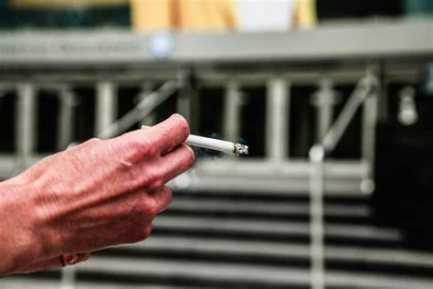 مصرف ماریجوانا بالا رفته است