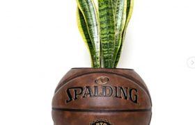 گلدانهایی از جنس توپ بسکتبال