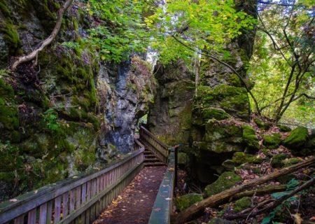 فهرستی از ۱۰ شهر کانادا با بیشترین فضای سبز شهری